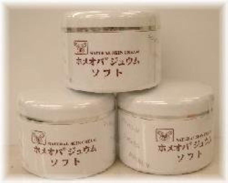 ナンセンス武装解除スローガンホメオパジュウム スキンケア商品3点¥10500クリームソフトx3個