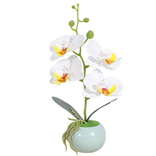VIVILINEN Mini Flores Artificiales Plásticos Flor de Phalaenopsis realistas Orquídea Mariposa con Maceta Imitación Cerámica Decoración Cálida para Hogar Dormitorio y Oficina (Blanco)