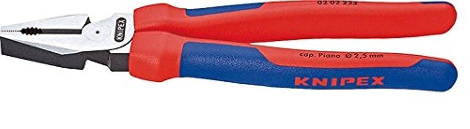 クニペックス KNIPEX 0202-225 強力型ペンチ (SB)