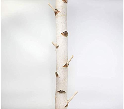 Weiße Birkenstamm-Garderobe getrocknet - bis 3 Meter Länge