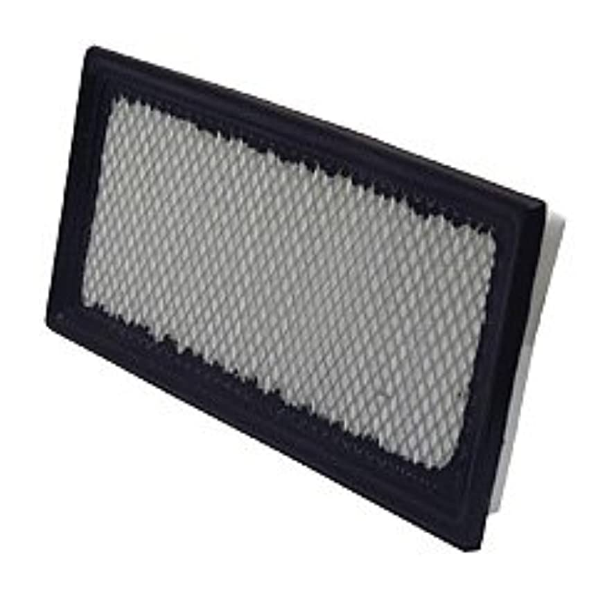 WIX Filters - 49192 Air Filter Panel, Pack of 1