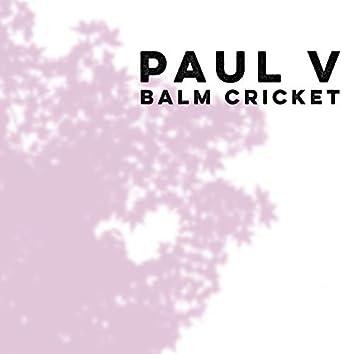 Balm Cricket