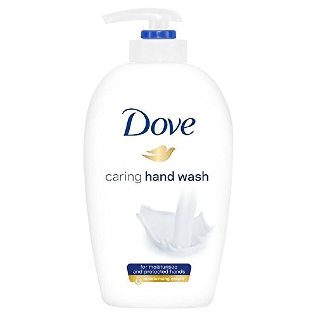 バウンド年金受給者腰鳩思いやり手洗い250ミリリットル x4 - Dove Caring Hand Wash 250ml (Pack of 4) [並行輸入品]