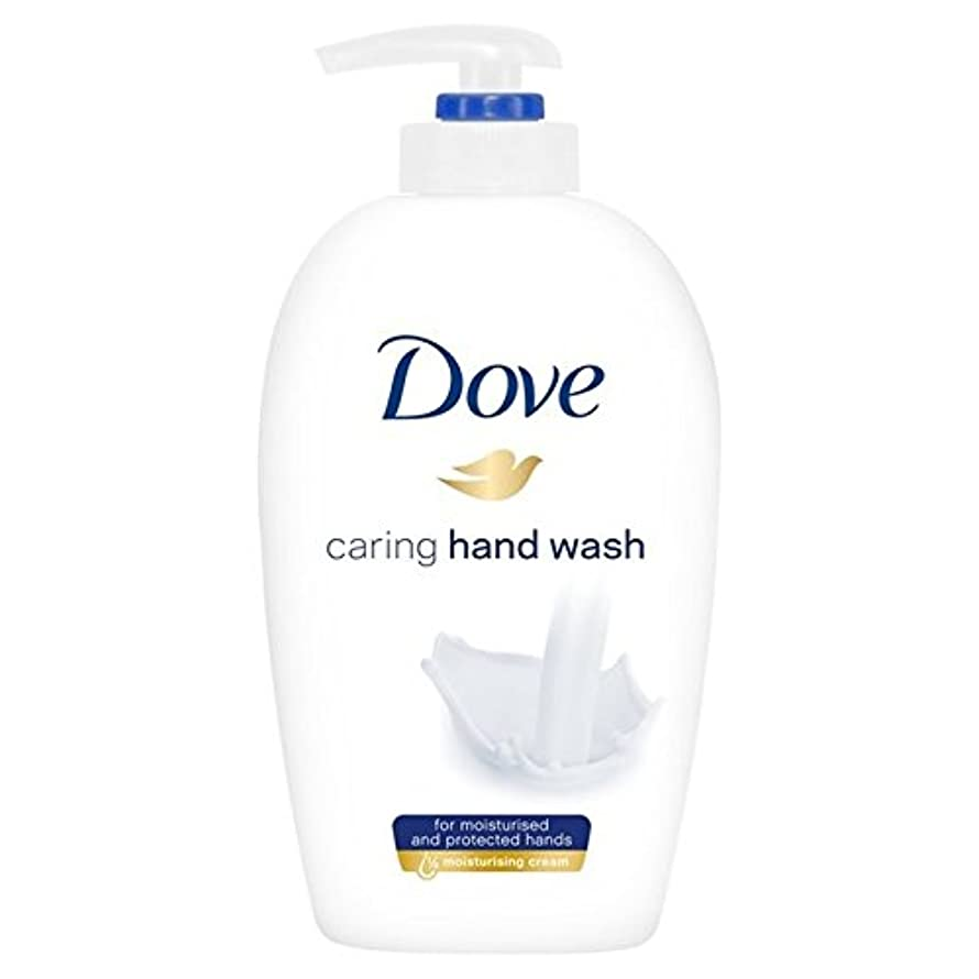実験思い出より平らなDove Caring Hand Wash 250ml - 鳩思いやり手洗い250ミリリットル [並行輸入品]