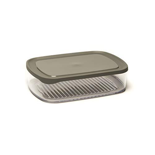 Amuse Käse-Frischhaltedose für den Kühlschrank, rechteckig, auch zur Aufbewahrung von Aufschnitt, 23 x 16 x 6 cm Käsedose, PS, transparent, One Size