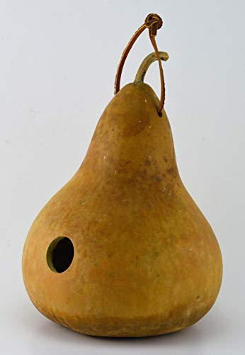 Gourd Birdhouse, Unfinished, Create Your Own Birdhouse