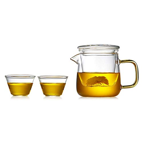 Why Should You Buy ZYL-YL Glass s Kettle Glass Outdoor Travel Tea Set Portable Bag Home Simple Moder...