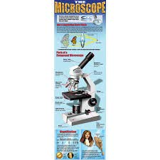The Microscope Colossal Poster
