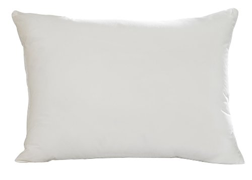 Aller-Ease Hot Water Washable Allergy Pillow,Queen, Firm