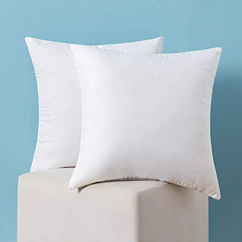 MIULEE Set of 2 Throw Pillow Inserts Hypoallergenic Premium Pillow Stuffer Square Form for Decorative Cushion Bed Couch Sofa 24x24 Inch
