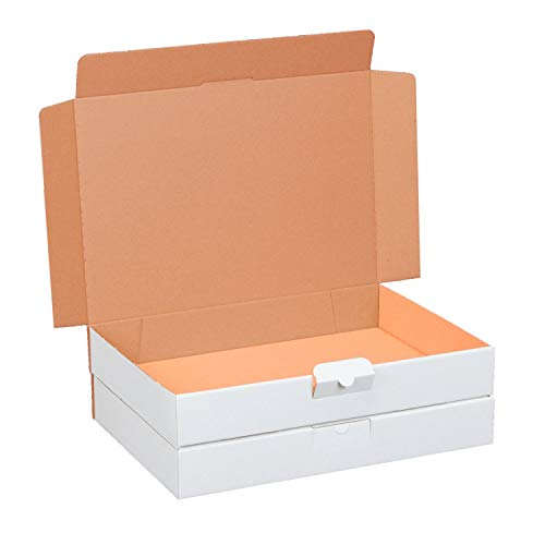 100 Maxibriefkartons 320 x 225 x 50 mm weiß (100 Stück) DIN A4 Maxibrief Versandkarton für DHL DPD GLS Hermes Warensendung Büchersendung mit Steckverschluss