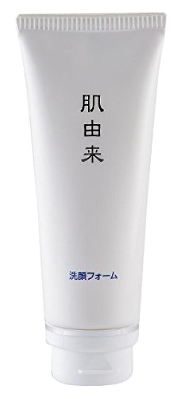 手綱正しい過剰肌由来化粧品 洗顔フォーム 110g