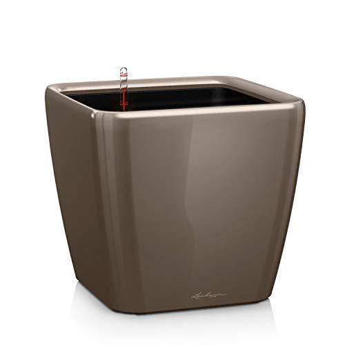LECHUZA QUADRO Premium LS 28, Taupe Hochglanz, Hochwertiger Kunststoff, Inkl. Bewässerungssystem, Herausnehmbarer Pflanzeinsatz, Für Innen- und Außenbereich, 16145