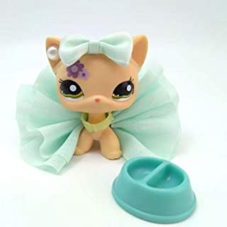 Littlest Pet Shop LPS Short Hair Cat 1962 Purple Flower Green Eyes +Lps Clothes