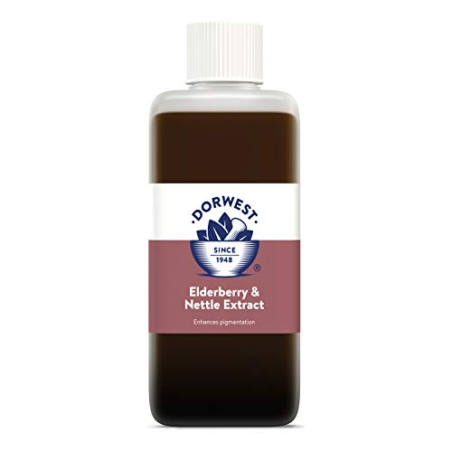 DORWEST HERBS Elderberry and Nettle Extract for Dogs and Cats 125 ml