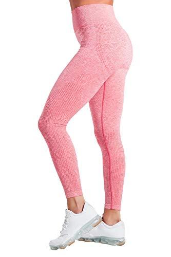 Pau1Hami1ton Talle Alto Sin Costura Leggins para Mujer Gimnasio Capri Mallas Pantalones de Yoga Niñas Fitness Leggings Deportivos GP-13(Coral,M)