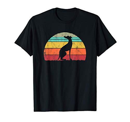 Amante de los perros Galgos Greyhound Vintage Camiseta