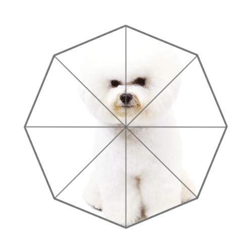 Funny Koala Custom Unique Durable Custom Foldable Umbrella