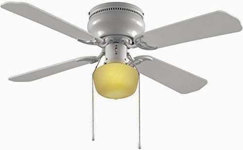 Hampton Bay Littleton 42 in. Ceiling Fan