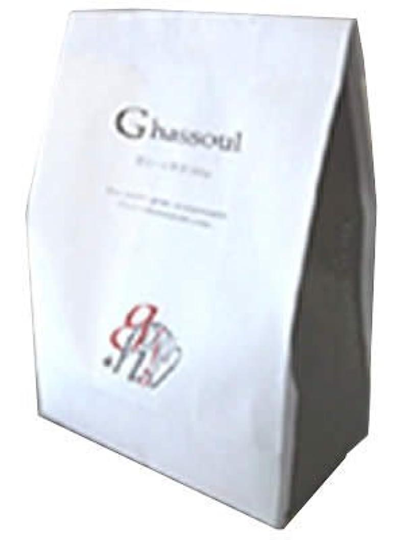 アイドル構成する噴出するナイアード ガスール固形(タブレット)タイプ 500g