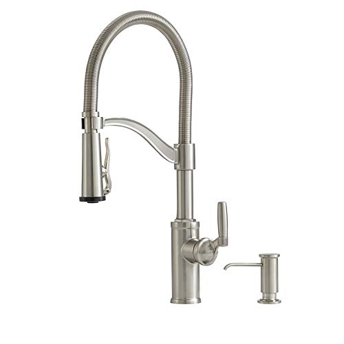 Giagni Stainless 1 Handle Pull Down Kitchen