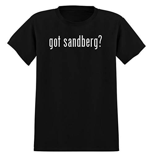 got sandberg? - Men's Soft Graphic T-Shirt Tee, Black, Medium
