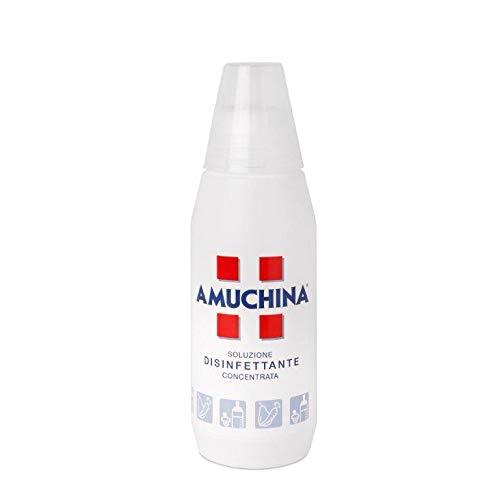 Amuchina Disinfettante 100% Concentrato - 500 ml