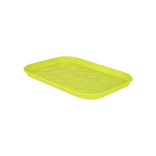 Elho Green Basics Plateau De Culture Soucoupe Petit, Lime Vert, 24 cm
