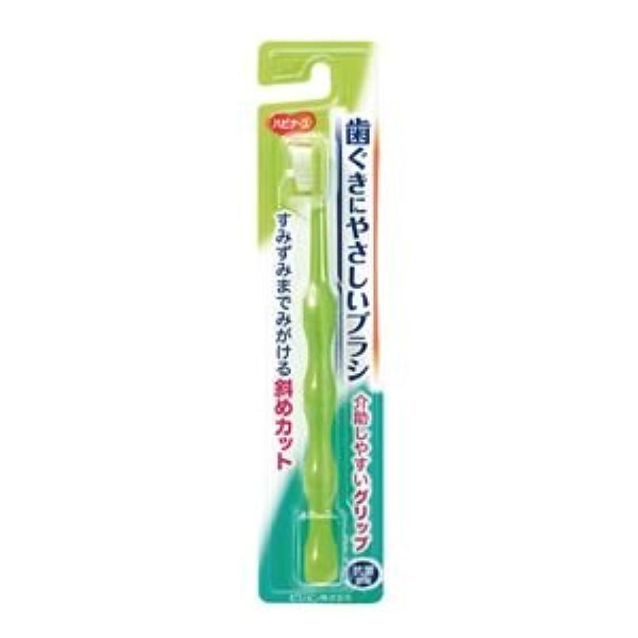 磁気イサカ膿瘍(業務用20セット) ピジョン ハビナース 歯ぐきにやさしいブラシ