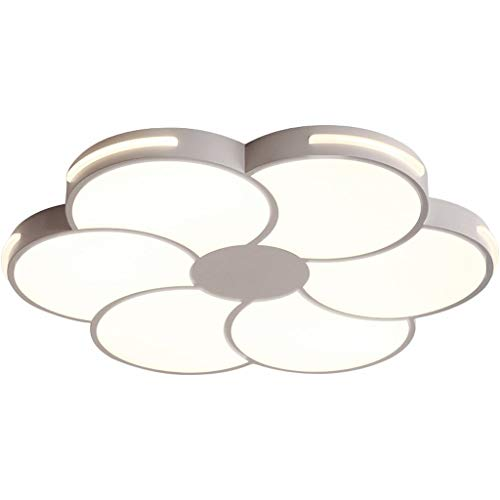 Familiemode creatieve smeedijzeren slaapkamer lampen warmte LED decoratieve plafondlamp, JTD 50 * 5 cm wit licht.