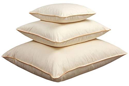 Soft Dream 100% Federn Feder Natuerliche Ecru Kissen Kopfkissen 80x80 40x80 40x40 50x50 (80 x 80 cm, 2500)