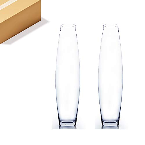 """WGV Tall Bullet Glass Vase Bulk, Width 6"""", Height 24"""", (Multiple Sizes Choices) Clear Oval Urn Floral Planter Container Storage Centerpiece, Wedding Event Home Decor, 2 Pieces (VFV0424)"""