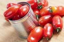 1000mg BIO Roma Graines de tomate ~ 350ct tomates production Canning USA non-OGM