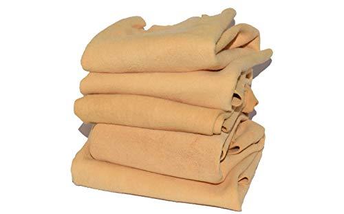 CarMax Peau de chamois anglais de qualité supérieure – Lot de 5 – Regular 0.11 m²