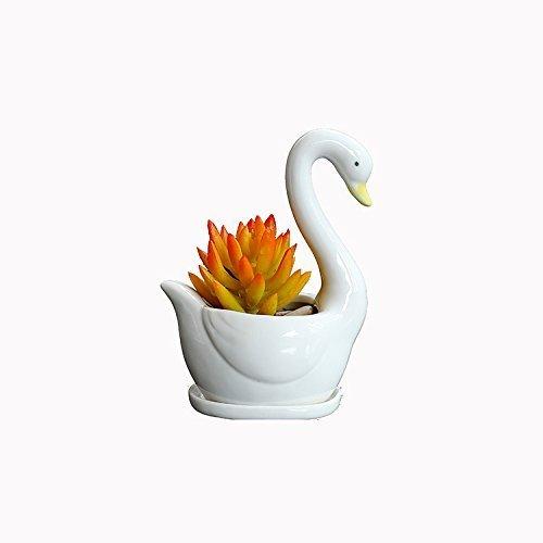 Wish You Have A Nice Day Set aus 2modernen weiß Keramik Sukkulente Übertopf Töpfe/Mini Flower Plant Behälter mit Bambus Untertassen