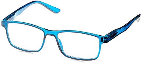 Michael Pachleitner Group Premium Clip-Lesehilfe mit Sonnenschutzclip und Federscharnier inklusive Etui, blau / +2 Dioptrien