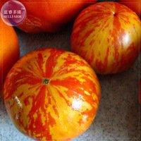 Pinkdose® 2018 Heißer Verkauf Heirloom Red Zebra Tomate mit Golden Stripe Bio-Samen, 100 Samen, Professional Pack, Non-GMO leckere saftige Früchte TS371T