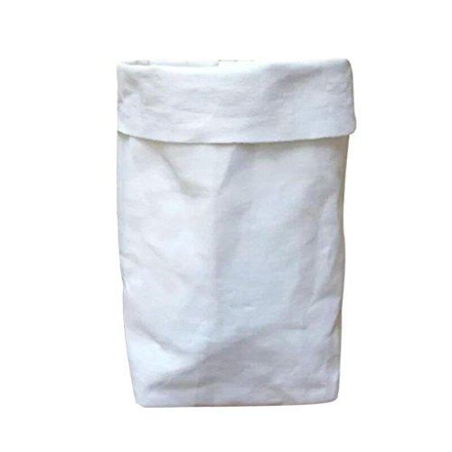 BZLine®Sac de Papier Kraft Lavable Fleurs Plantes Pots Multifonction Sac de Rangement à la Maison (Blanc)