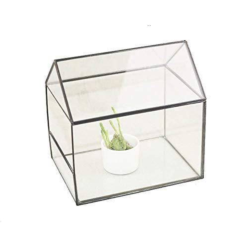 Plant Terrarium, Geometrische Glas Decor Terrarium Centerpiece Tafelblad Planter Tafelblad Succulente Planter/Thee Licht Kaarsenhouder Zwart Kassen Tuinieren
