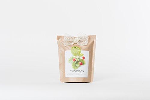 Kit Bio Légumes, aromates, fleurs comestible par Life in a Bag - A cultiver soi-même - Idée cadeau (Fraise)