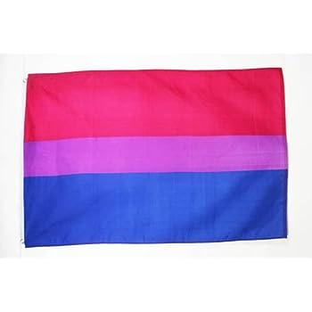 Bandera OMNISEXUALIDAD 90 x 150 cm AZ FLAG Bandera de la PANSEXUALIDAD 150x90cm