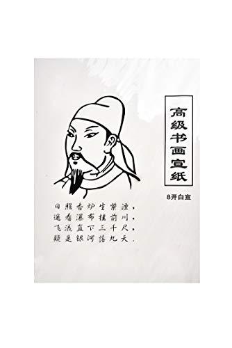 Quantum Abacus Hochwertiges Raw Xuan Papier für Kalligraphie und Malerei, chinesisches Octav-Format (36cm x 27cm), 28 Blatt, Mod. WP-8.01