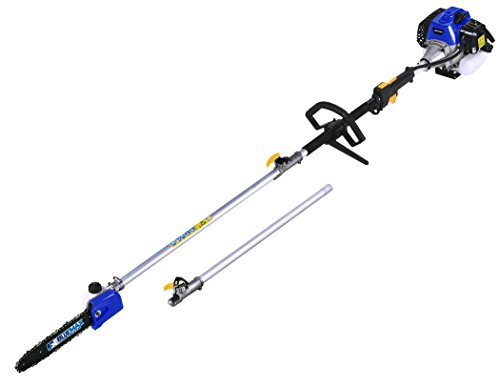 BLUE MAX 53542 Gasoline Pole Saw