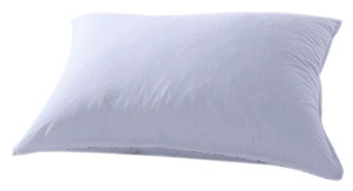 Essix - Oreiller Eden Coton 63 x 63 cm