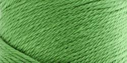 Caron Simply Soft Yarn Solids (3-Pack) Soft Green H97003-9779