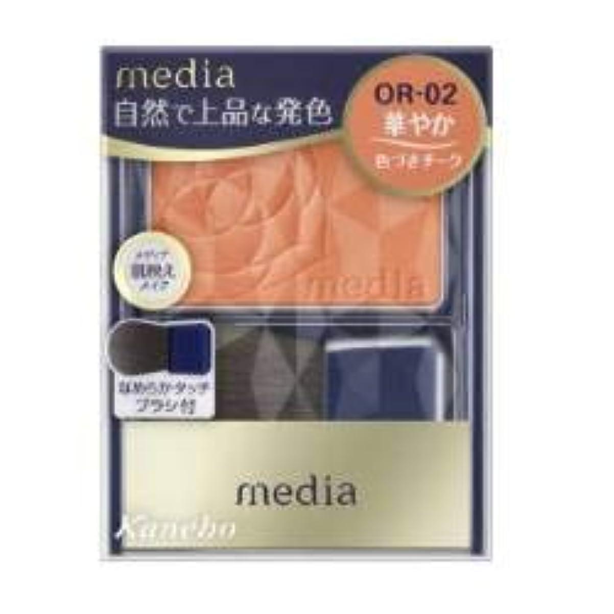 謎どこにもマルコポーロカネボウ メディア ブライトアップチークN OR02