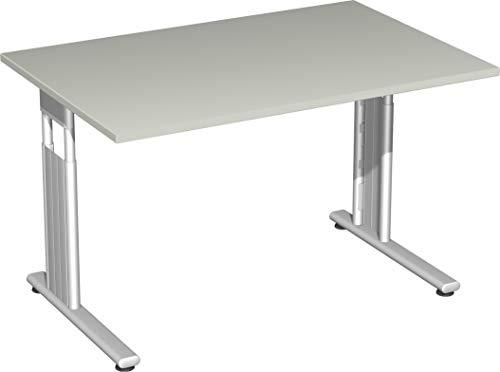 Gera Möbel S-617102-LG/SI Schreibtisch Lissabon, 120 x 80 x 68-82 cm, lichtgrau/Silber