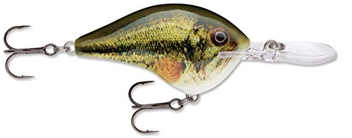 Rapala Dives-to 14 Live DT14LBL: Dives-to 14 Live Largemouth Bass (Best Way To Fillet A Bass)