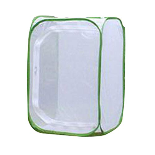 GeKLok Pflanzen-Gewächshaus-Zelt, Schmetterlings-Lebensraum-Käfig mit durchsichtiger PVC-Folie Lichtdurchlässiger, zusammenklappbarer Insektenkäfig mit Reißverschluss, zur Aufzucht von Insekten In