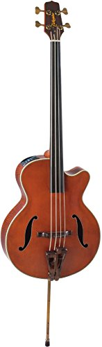 Takamine 555-0110-368 TB10 Fretless Akustik Bass